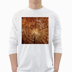 CROSS SECTION OF AN OLD TREE White Long Sleeve T-Shirts