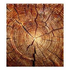 Cross Section Of An Old Tree Shower Curtain 66  X 72  (large)