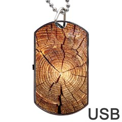 Cross Section Of An Old Tree Dog Tag Usb Flash (one Side)