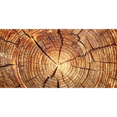 CROSS SECTION OF AN OLD TREE YOU ARE INVITED 3D Greeting Card (8x4)