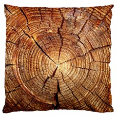 CROSS SECTION OF AN OLD TREE Large Cushion Cases (Two Sides)