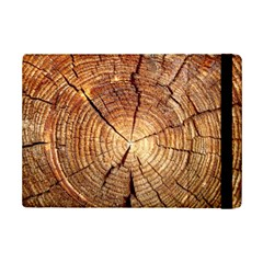 CROSS SECTION OF AN OLD TREE iPad Mini 2 Flip Cases