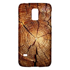 Cross Section Of An Old Tree Galaxy S5 Mini