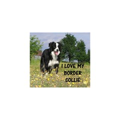 Border Collie Love W Picture YOU ARE INVITED 3D Greeting Card (8x4)