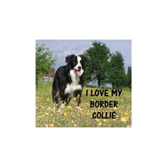 Border Collie Love W Picture Birthday Cake 3D Greeting Card (7x5)