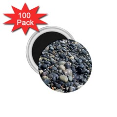 PEBBLES 1.75  Magnets (100 pack)