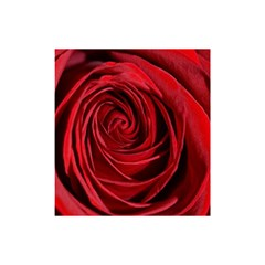 Beautifully Red Shower Curtain 48  X 72  (small)