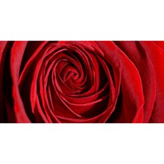 Beautifully Red YOU ARE INVITED 3D Greeting Card (8x4)