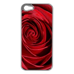 Beautifully Red Apple iPhone 5 Case (Silver)
