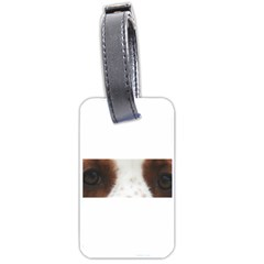 Welsh Springer Spaniel Eyes Luggage Tags (Two Sides)