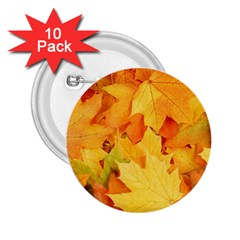 YELLOW MAPLE LEAVES 2.25  Buttons (10 pack)