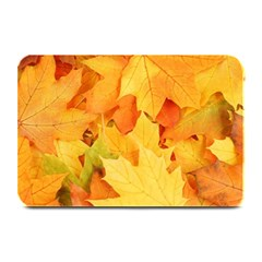 Yellow Maple Leaves Plate Mats