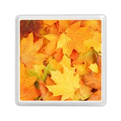 Yellow Maple Leaves Memory Card Reader (square)