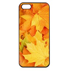 YELLOW MAPLE LEAVES Apple iPhone 5 Seamless Case (Black)