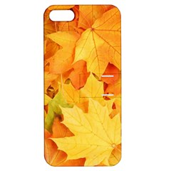 YELLOW MAPLE LEAVES Apple iPhone 5 Hardshell Case with Stand