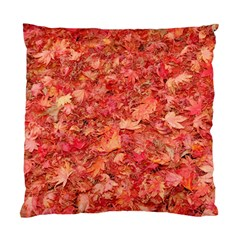 RED MAPLE LEAVES Standard Cushion Case (One Side)