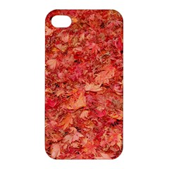 RED MAPLE LEAVES Apple iPhone 4/4S Hardshell Case