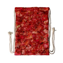 RED MAPLE LEAVES Drawstring Bag (Small)