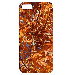 ORANGE LEAVES Apple iPhone 5 Hardshell Case with Stand