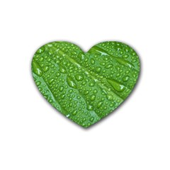 GREEN LEAF DROPS Rubber Coaster (Heart)