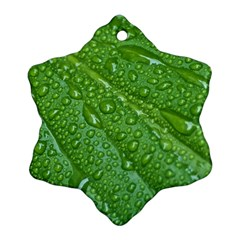GREEN LEAF DROPS Ornament (Snowflake)