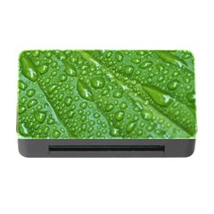 GREEN LEAF DROPS Memory Card Reader with CF