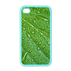 GREEN LEAF DROPS Apple iPhone 4 Case (Color)