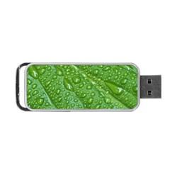 Green Leaf Drops Portable Usb Flash (one Side)
