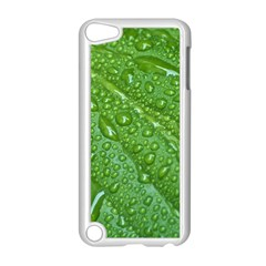 GREEN LEAF DROPS Apple iPod Touch 5 Case (White)