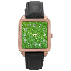 Green Leaf Drops Rose Gold Watches