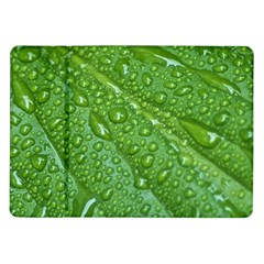 GREEN LEAF DROPS Samsung Galaxy Tab 10.1  P7500 Flip Case