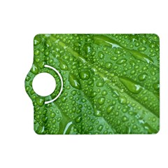 Green Leaf Drops Kindle Fire Hd (2013) Flip 360 Case