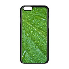 Green Leaf Drops Apple Iphone 6/6s Black Enamel Case