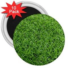 GREEN GRASS 2 3  Magnets (10 pack)