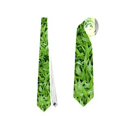 Green Grass 2 Neckties (one Side)