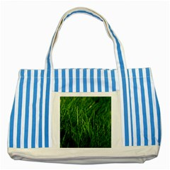GREEN GRASS 1 Striped Blue Tote Bag