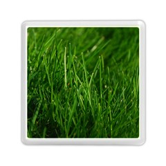Green Grass 1 Memory Card Reader (square)