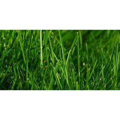 Green Grass 1 You Are Invited 3d Greeting Card (8x4)