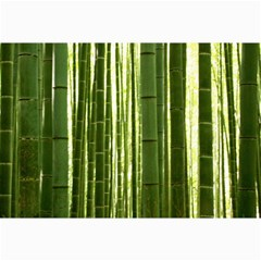 Bamboo Grove 2 Collage 12  X 18
