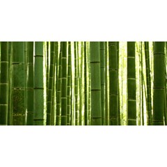 Bamboo Grove 2 You Are Invited 3d Greeting Card (8x4)
