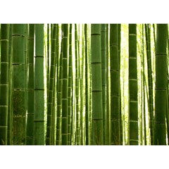 Bamboo Grove 2 Birthday Cake 3d Greeting Card (7x5)