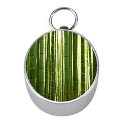 Bamboo Grove 2 Mini Silver Compasses