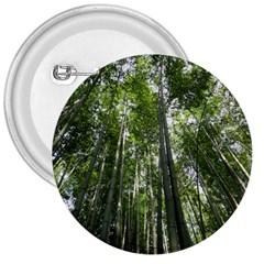 BAMBOO GROVE 1 3  Buttons