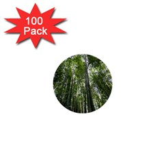 BAMBOO GROVE 1 1  Mini Buttons (100 pack)