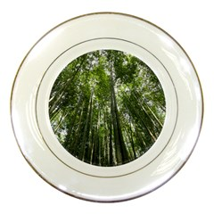 BAMBOO GROVE 1 Porcelain Plates