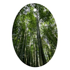 Bamboo Grove 1 Oval Ornament (two Sides)