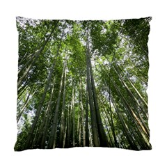 BAMBOO GROVE 1 Standard Cushion Cases (Two Sides)