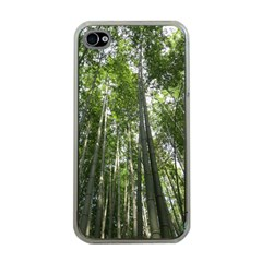 BAMBOO GROVE 1 Apple iPhone 4 Case (Clear)