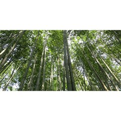 Bamboo Grove 1 You Are Invited 3d Greeting Card (8x4)