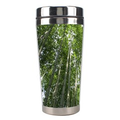 BAMBOO GROVE 1 Stainless Steel Travel Tumblers